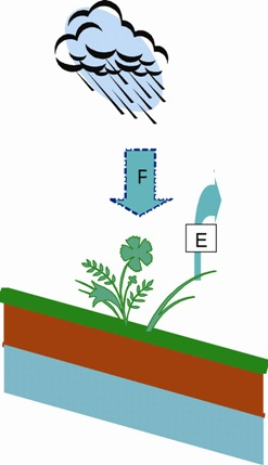 Fig 5 - If precipitation (P) is greater than Evapotranspiration (E) then we have