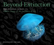 Beyond Extinction