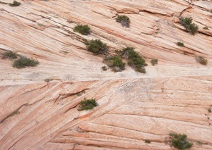 Sandstone Cross Bedding