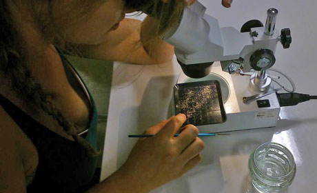 Rebecca working on a sand sample