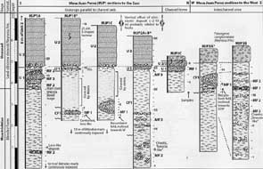 Stratigraphic columns of the Mesa san Juan-Sierrita area of Peter Schulte