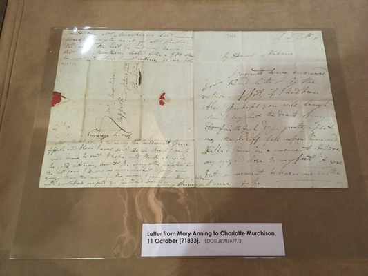 Letter from Mary Anning to Charlotte Murchison